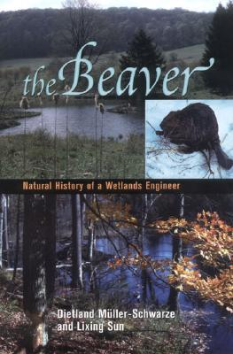 The Beaver: Ecology and Behavior of a Wetland Engi...