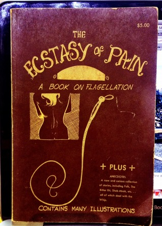 The Ecstasy of Pain: A Book On Flagellation