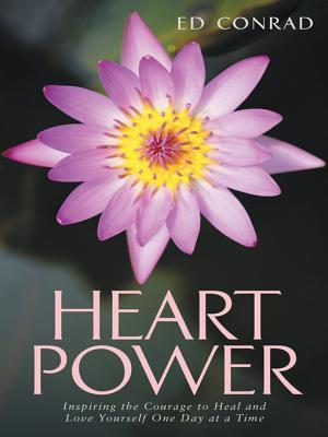 Heart Power: Inspiring the Courage to Heal and Lov...