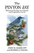 The Pinyon Jay: Behavioural Ecology of a Colonial ...